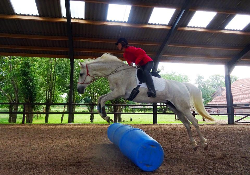 Humphrey Dirks Horsemanship, squeeze game rijdend