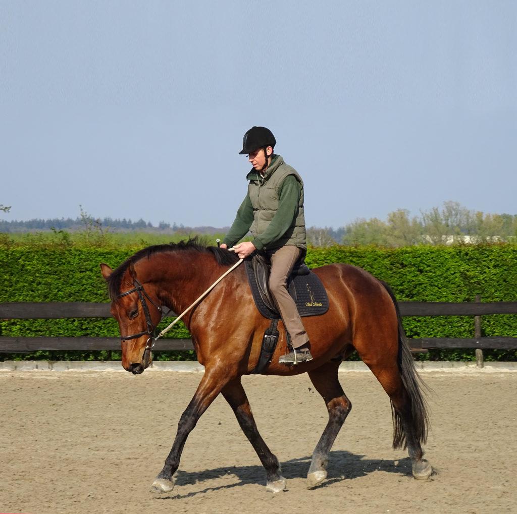 Humphrey Dirks Horsemanship, finesse